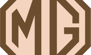 MG-GWR_300_pixels